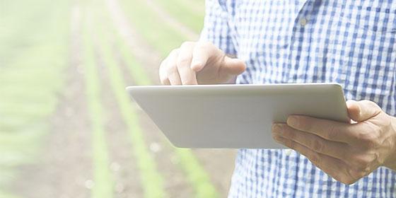 Foto de uma mão segurando um tablet